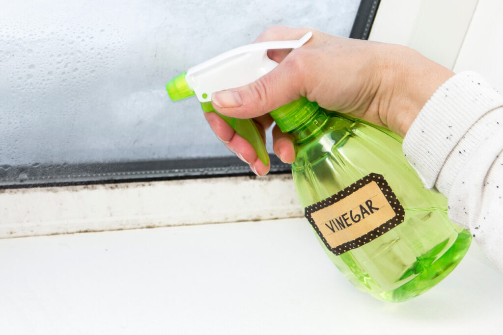 remove window mould with vinegar